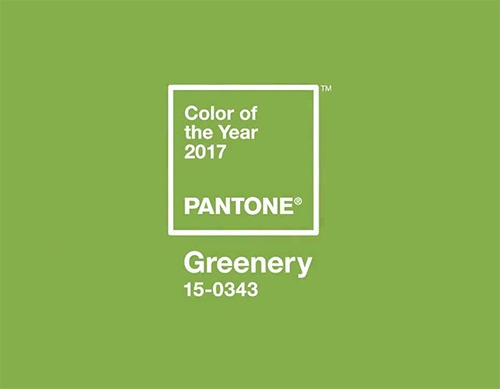 Colour of the Year - Greenery - Pantone