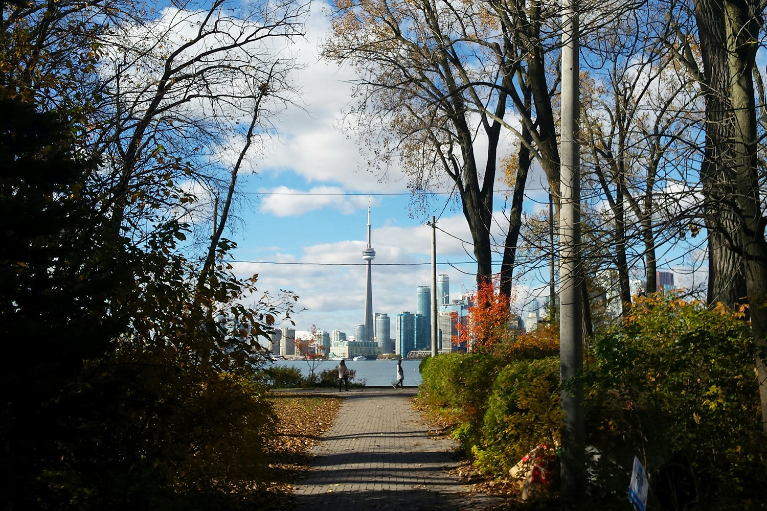 The view of the CN Tower and downtown Toronto from the Islands. (Photo credit Linda Rosenbaum)