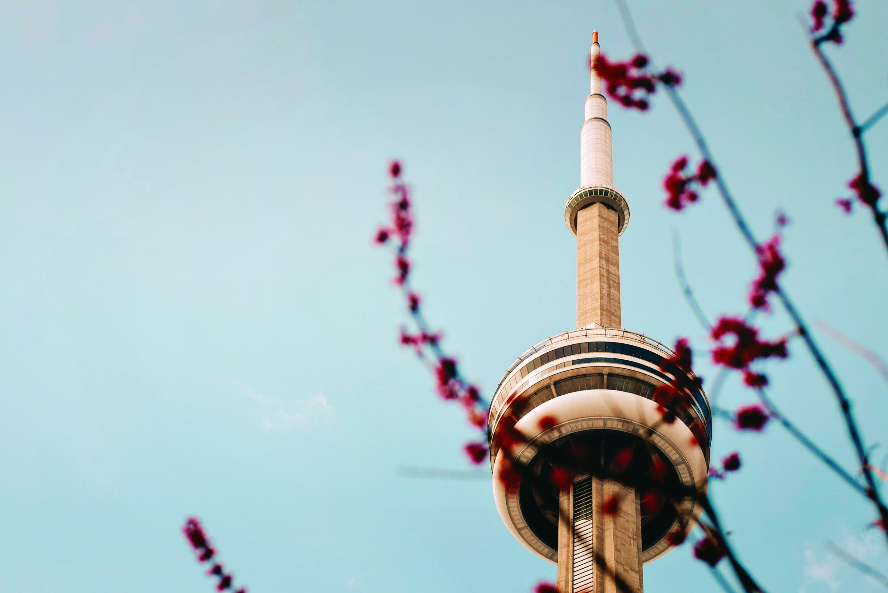 Toronto Spring Housing Predictions